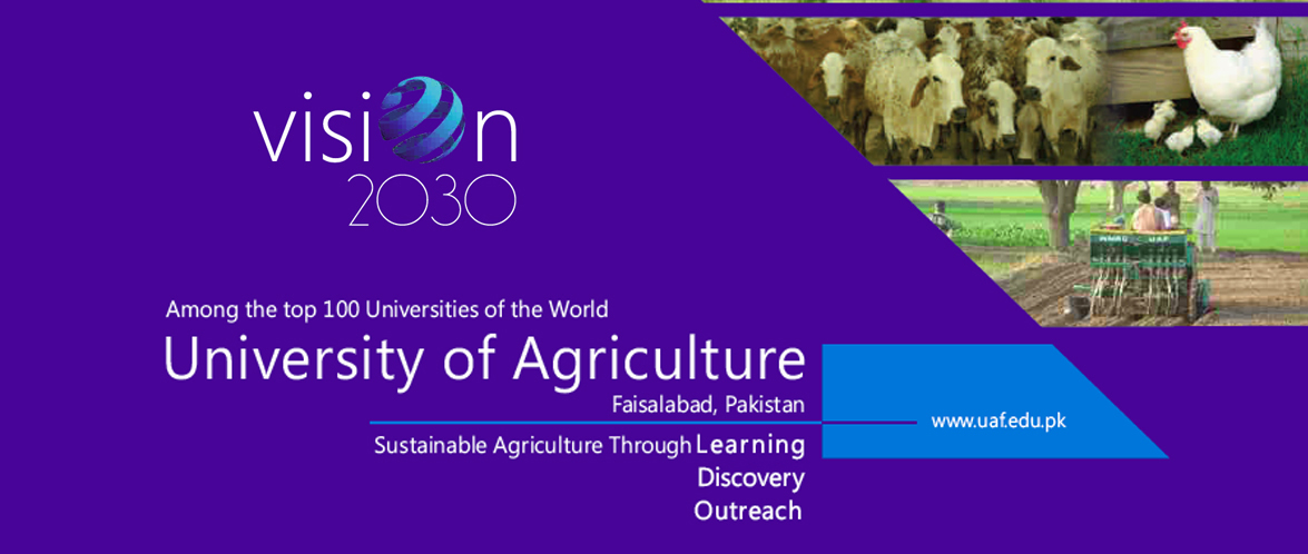 University of Agriculture Faisalabad (UAF)